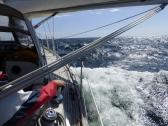 Phoenix, Abenteuer, Wirtschaftsseminar, Ben Hadamovsky, Weltumseegeln, segeln